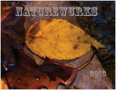 Click to Download NatureWurks 2013 Wallpaper Calendar