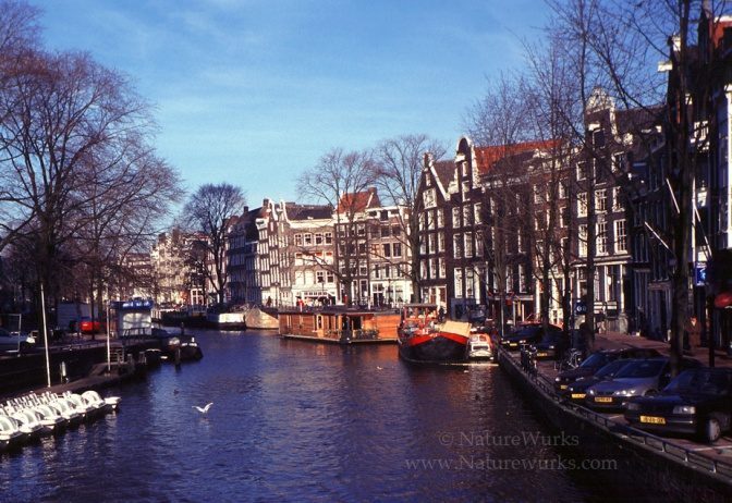 AmsterdamCanal1_OUT