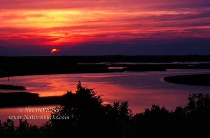 Sunset_PalicoSound1-OUT