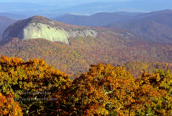 Looking Glass Rock - Pisgah National Forest  |  Blue Ridge Parkw
