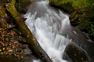 Upper Toe River Pisgah National Forest