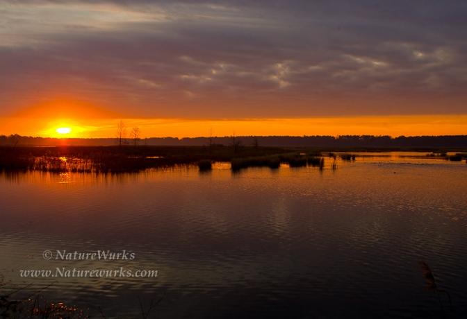 Click to Visit NatureWurks and View Sunrise Lake Mattamuskeet National Wildlife Refuge | North Carolina and other Images