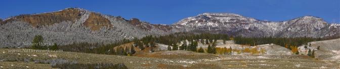 Barronette Peak | Yellowstone National Park