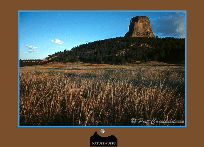 devilstowerfield_out
