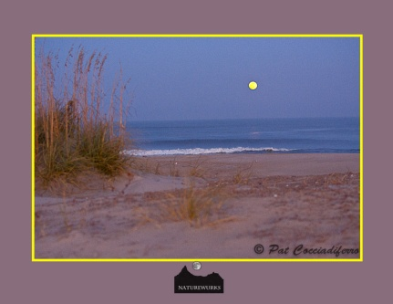 moonrisesandunes_11_ku8s0300