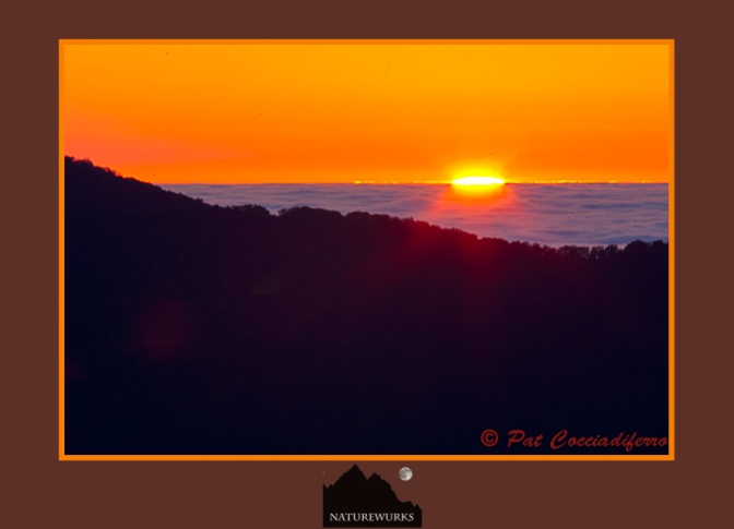 sunrise_start_12_c6b8225