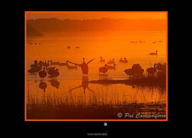 sunsetpealsl_12_c6b4673
